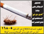 Egypt 2016 Health Effects Death - symbolic
