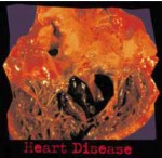 Aussie 2002 Health Effects heart - diseased organ, heart disease, gross