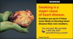Canada 2012  Health Effects heart - diseased organ, heart disease - cigar eng