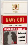 Wills Navy Cut Regular Size (India Nov 10) - Right side angle